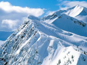 montana-nevada-9